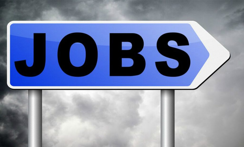Company News: Career Opportunities